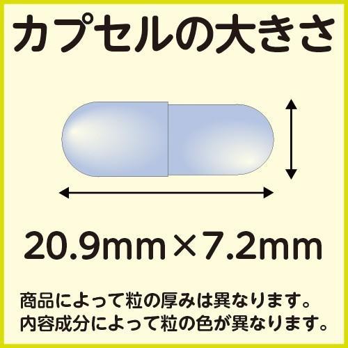3個セット 健美堂 超級雷電王|kenbido|02