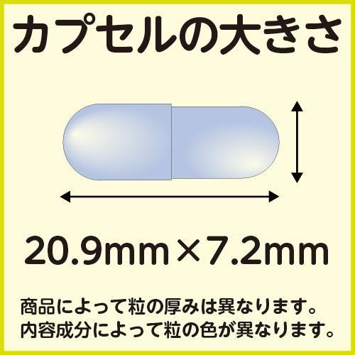 3個セット 健美堂 MXB-9PRO|kenbido|02