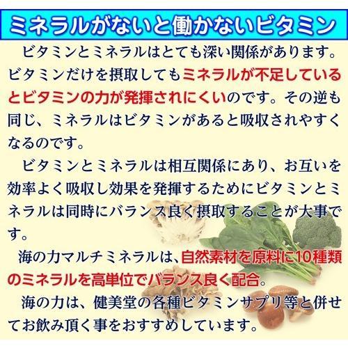 賞味期限切れのため特価 健美堂 海の力-マルチミネラル- 180粒 約30日分 マルチミネラル|kenbido|03