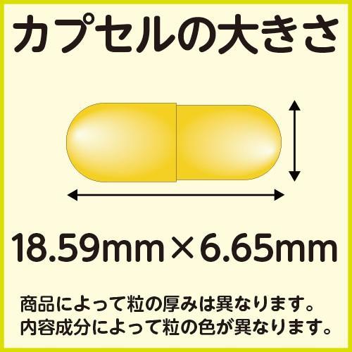 賞味期限切れのため特価 健美堂ハイドーズソーパルメット-ノコギリヤシハーブ- 20粒 約10日分 ノコギリヤシ kenbido 02