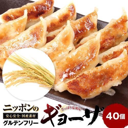 K173 訳あり餃子 ニッポンの餃子 フード ジューシーで食べ応えのあるおいしさがたまりません 低廉 日本の素材をたっぷり使用したグルテンフリーのもちもち餃子 激安超特価