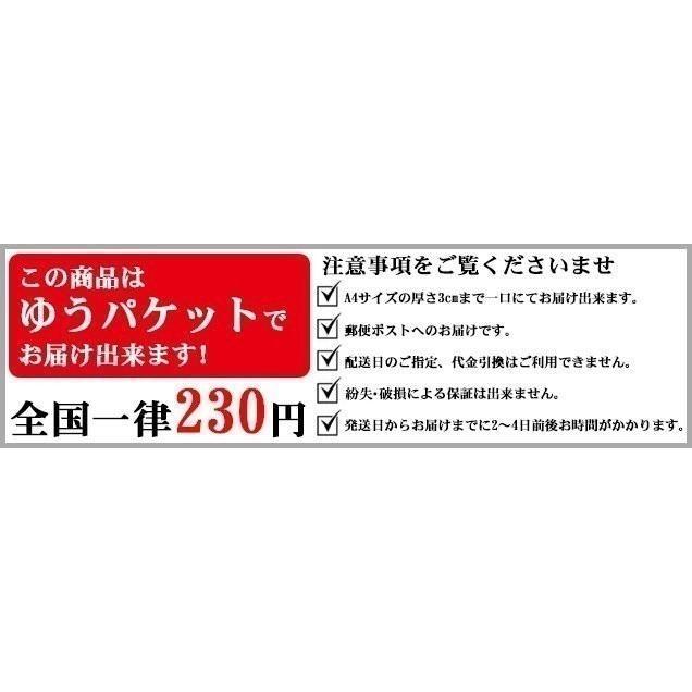 剣道 新人 データ バンク 2020