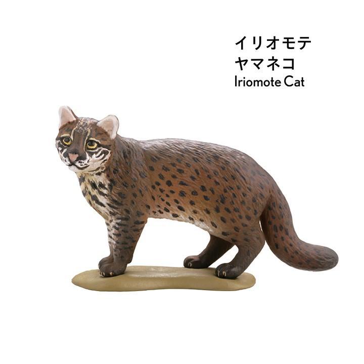 ミニチュア日本/ブラックBOX★9個入り|kenelephant|09
