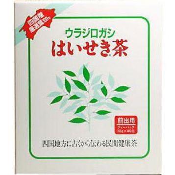 はいせき茶 煎出用 高級品 10g×40袋 2020A W新作送料無料