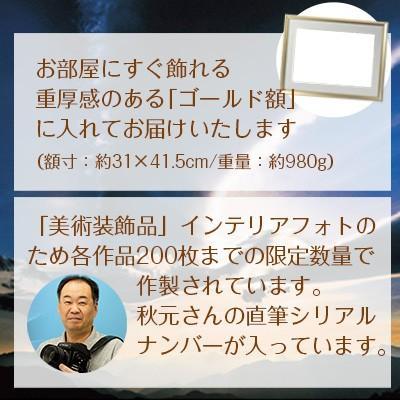 秋元隆良  金龍カード特典付   夕陽のマリア像 代引き不可|kenkami|04