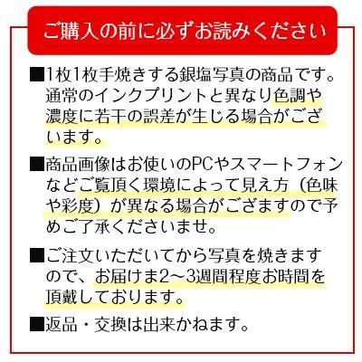 秋元隆良  金龍カード特典付   夕陽のマリア像 代引き不可|kenkami|10