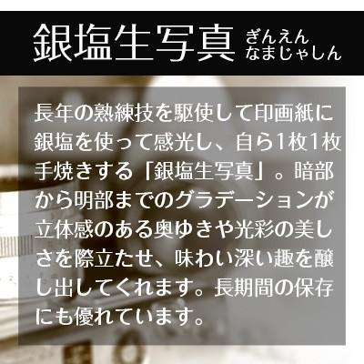 秋元隆良  金龍カード特典付  2L版 聖像に光輪 代引き不可|kenkami|09