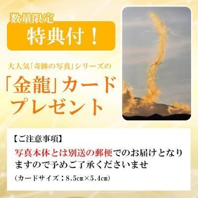 秋元隆良  金龍カード特典付  2L版 玉響 七色オーブ浮遊  代引き不可 kenkami 02