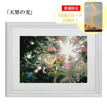 秋元隆良  金龍カード特典付  2L版 天界の光 代引き不可|kenkami