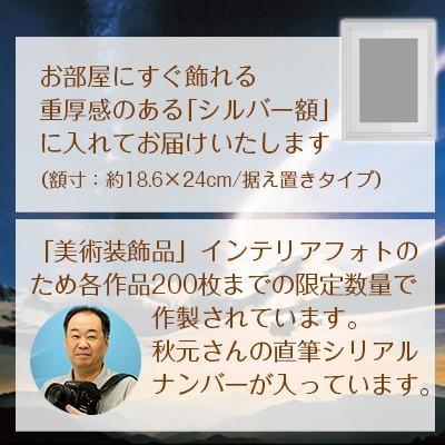 秋元隆良  金龍カード特典付  2L版 千年の夜桜にスカイフィッシュ 代引き不可|kenkami|04