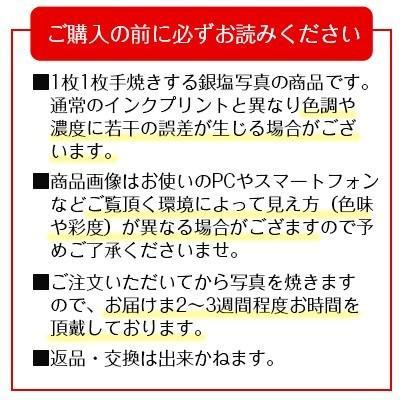 秋元隆良  金龍カード特典付  2L版 千年の夜桜にスカイフィッシュ 代引き不可|kenkami|10
