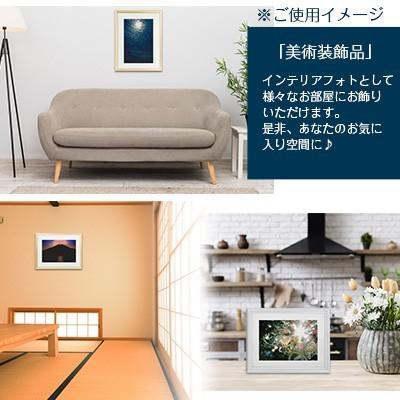 秋元隆良  金龍カード特典付   トリプルダイヤモンド 代引き不可|kenkami|08