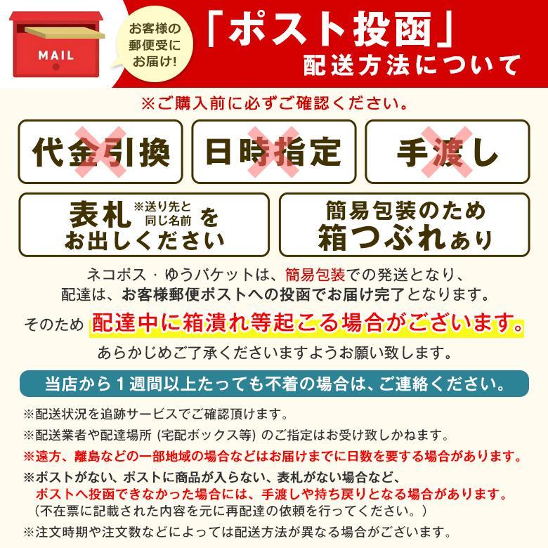SORBO ソルボライト 衝撃吸収 インソール 圧力分散 緩和 両足 かかと つま先 負担軽減 日本製 中敷き(ネコポス送料無料)|kenko-fan-nikko|04