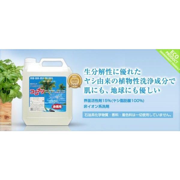 ココナツ洗剤 多目的洗剤 4L ココナツ洗剤 敏感肌 アトピー|kenko-store-tk|02
