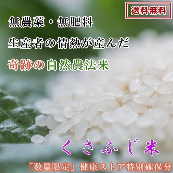 自然栽培米 九州 福岡県産 自然栽培米 10kg 無農薬 無肥料|kenko-store-tk