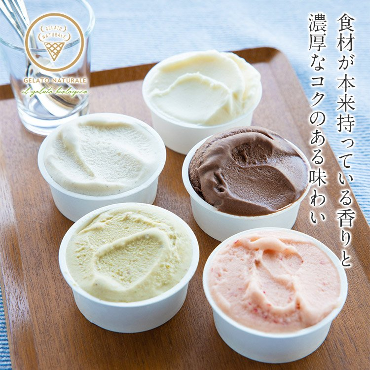 オーガニックジェラート 10個 GELATO NATURALE GIFT BOX 10 おまかせ 無添加アイスクリーム|kenko-store-tk|02
