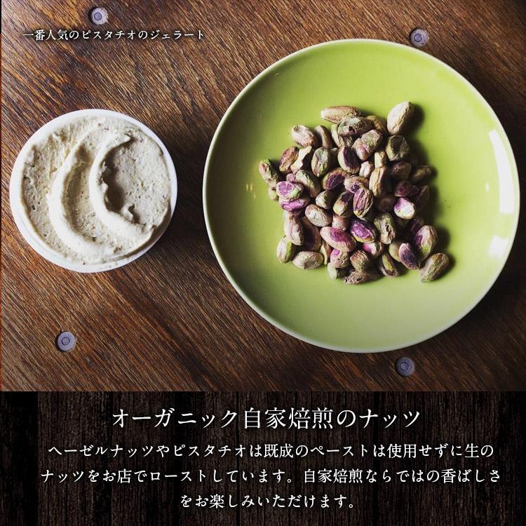 オーガニックジェラート 10個 GELATO NATURALE GIFT BOX 10 おまかせ 無添加アイスクリーム|kenko-store-tk|10