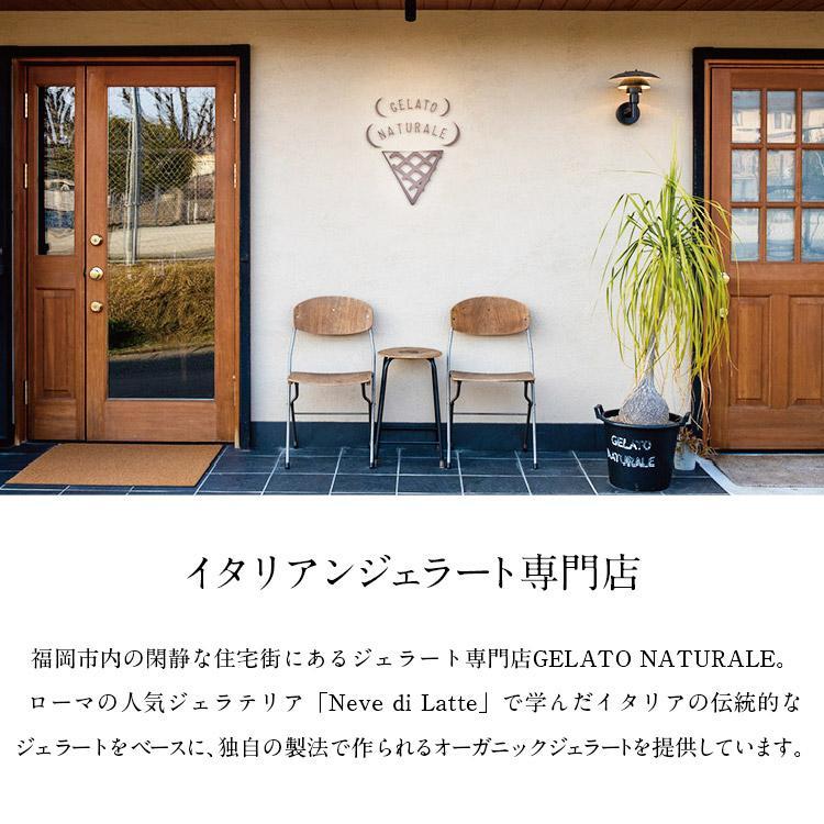 オーガニックジェラート 8個 GELATO NATURALE GIFT BOX 8 おまかせ 無添加アイスクリーム|kenko-store-tk|03