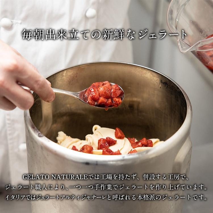 オーガニックジェラート 8個 GELATO NATURALE GIFT BOX 8 おまかせ 無添加アイスクリーム|kenko-store-tk|04