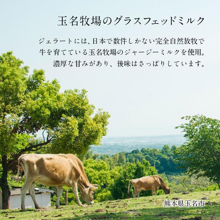 オーガニックジェラート 8個 GELATO NATURALE GIFT BOX 8 おまかせ 無添加アイスクリーム|kenko-store-tk|07