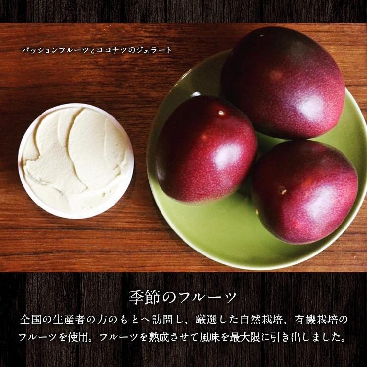 オーガニックジェラート 8個 GELATO NATURALE GIFT BOX 8 おまかせ 無添加アイスクリーム|kenko-store-tk|09