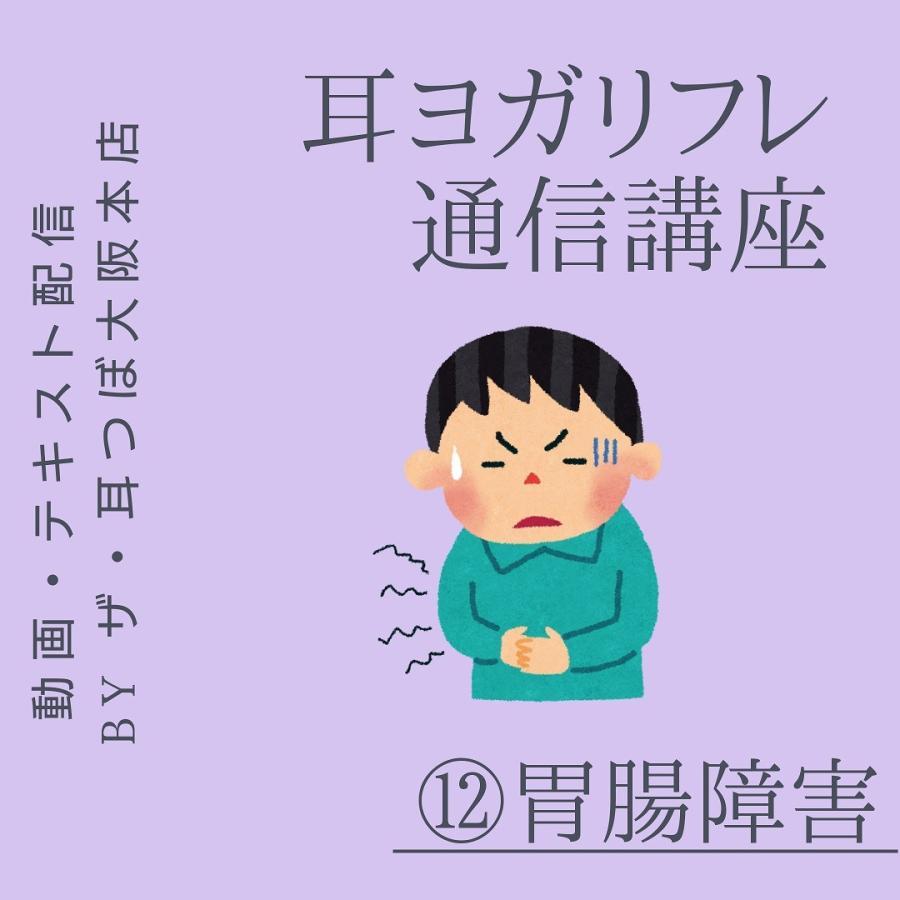 ポイント消化 通信講座 耳ヨガリフレ (12)胃腸の耳つぼ|kenkou-mimitsubo