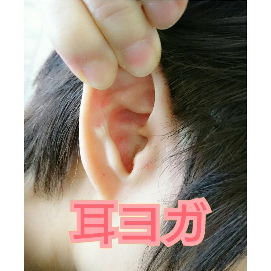 通信講座 コロナウイルス対策 たった3分で免疫力を上げる耳ヨガリフレ |kenkou-mimitsubo|03