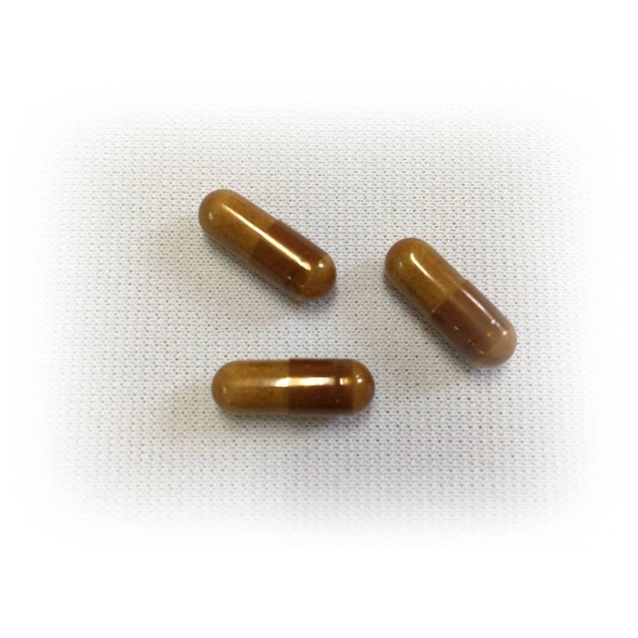 ミミズ乾燥粉末  HLP  DHA EPA  赤ブドウ葉   ルンブルクスルベルス 清巡 kenkoudou 04