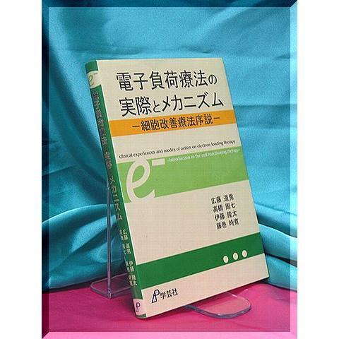 「電子負荷療法の実際とメカニズム」 kennkouigaku 02