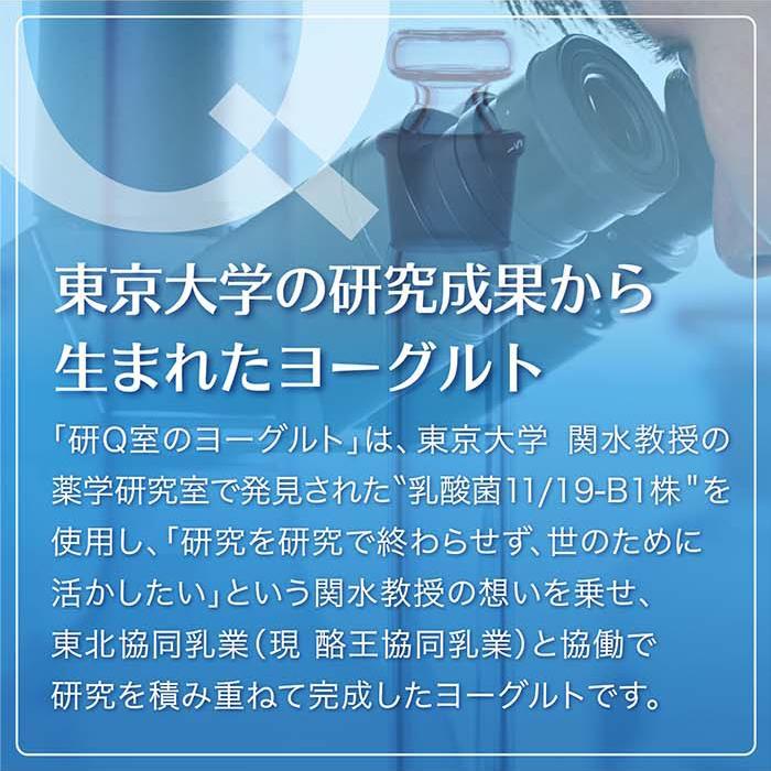 研Q室のヨーグルト(1箱8個入り)|kenq|04