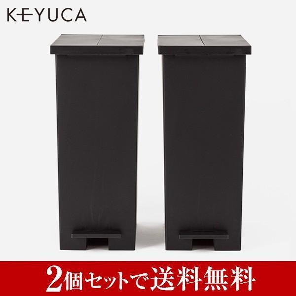 ごみ箱 キッチン 分別 ペダル ふた付き 蓋 arrots 公式サイト ケユカ 27L 買収 ブラック 2個セット KEYUCA ダストボックスII ゴミ箱