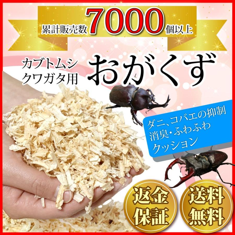 おがくず カブトムシ 国産 ひのき 100% 安全 チップ 防虫 クワガタ マット kicoriya 飼育 送料無料(一部地域を除く)