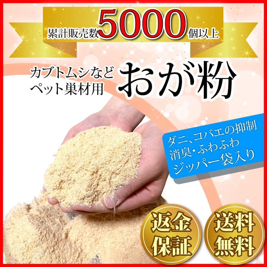 おが粉 おがくず 3mm 国産ひのき おがこ 粒子状 昆虫 200g 防虫 毎週更新 マット kicoriya ファッション通販