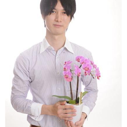 明日贈れる テーブル胡蝶蘭|kihana-shop|03