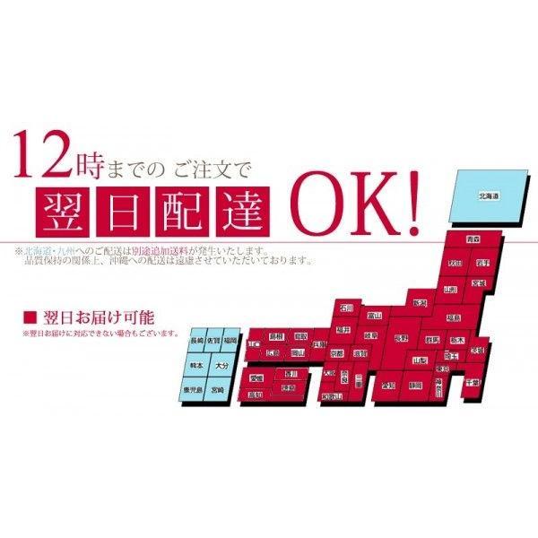 明日贈れる テーブル胡蝶蘭|kihana-shop|06