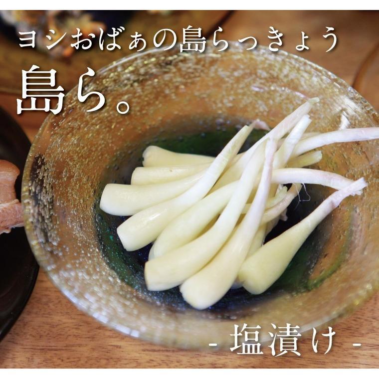 らっきょう 沖縄 漬物 ヨシおばぁの手作り 島ら。塩漬け 100g|kijimaya|02
