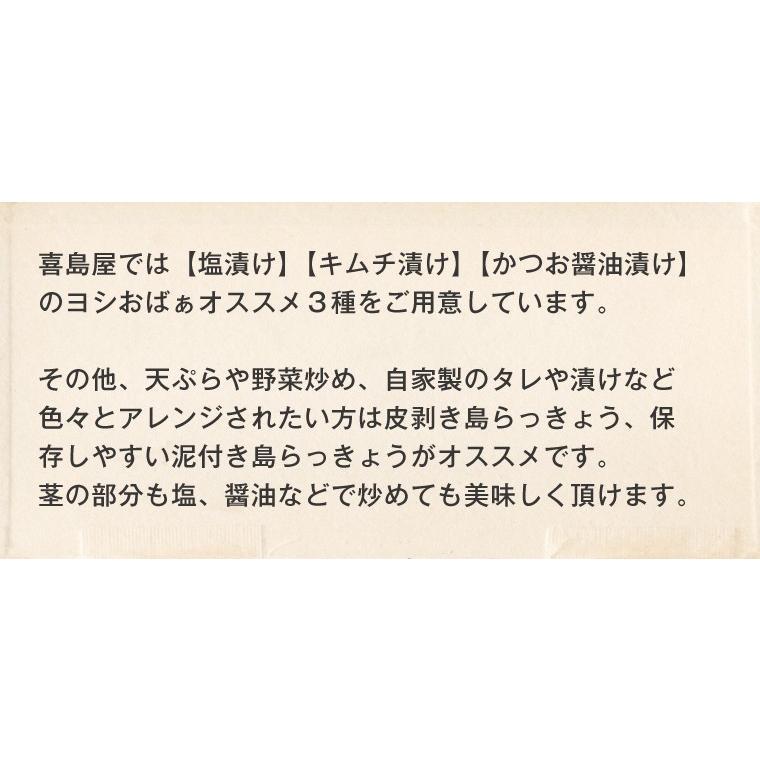 らっきょう 沖縄 漬物 ヨシおばぁの手作り 島ら。塩漬け 100g|kijimaya|03