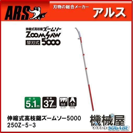 アルス 伸縮式高枝鋸 ズームソー5000 250Z-5-3 せんていのこぎり ARS ノコ 刃物 ザクザク切れる ハードクローム仕上げ 日曜大工 家庭菜園 庭木