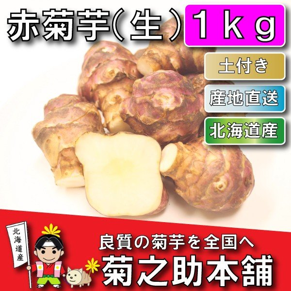 【条件付き送料無料】今話題の菊芋 北海道産 無農薬 化学肥料不使用 生 土付き 赤 1kg|kikunosukehonpo