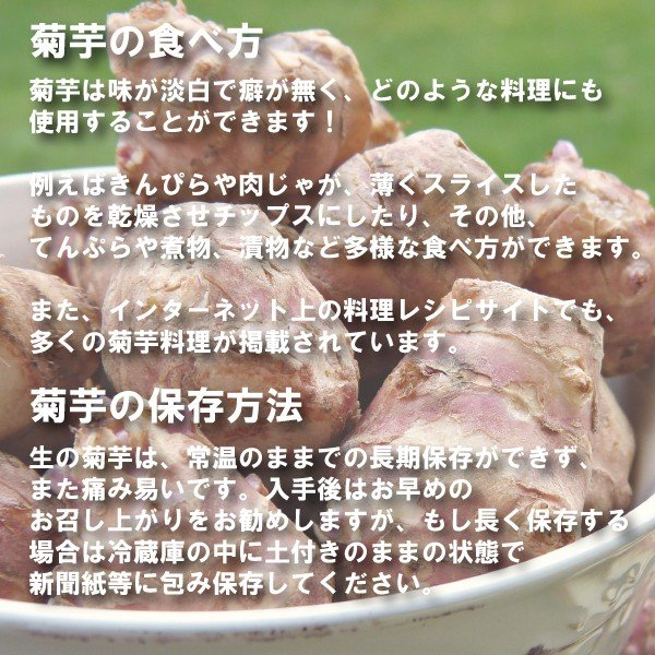 【条件付き送料無料】今話題の菊芋 北海道産 無農薬 化学肥料不使用 生 土付き 赤 1kg|kikunosukehonpo|03