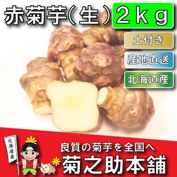 【条件付き送料無料】今話題の菊芋 北海道産 無農薬 化学肥料不使用 生 土付き 赤 2kg kikunosukehonpo