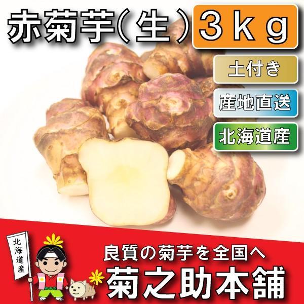 【条件付き送料無料】今話題の菊芋 北海道産 無農薬 化学肥料不使用 生 土付き 赤 3kg kikunosukehonpo