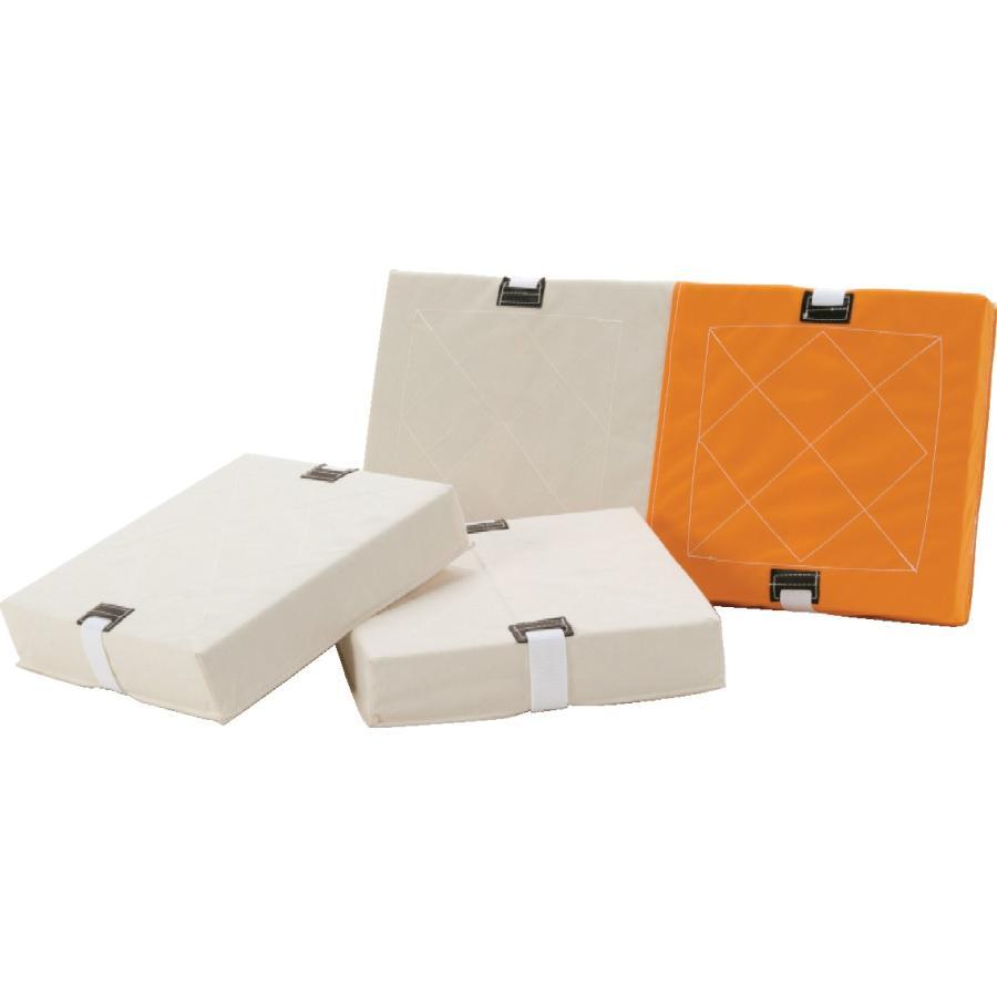 【送料別】ダブルベース検定品(帆布製) 1枚 ダブルベース1枚 【三和体育】S-4695