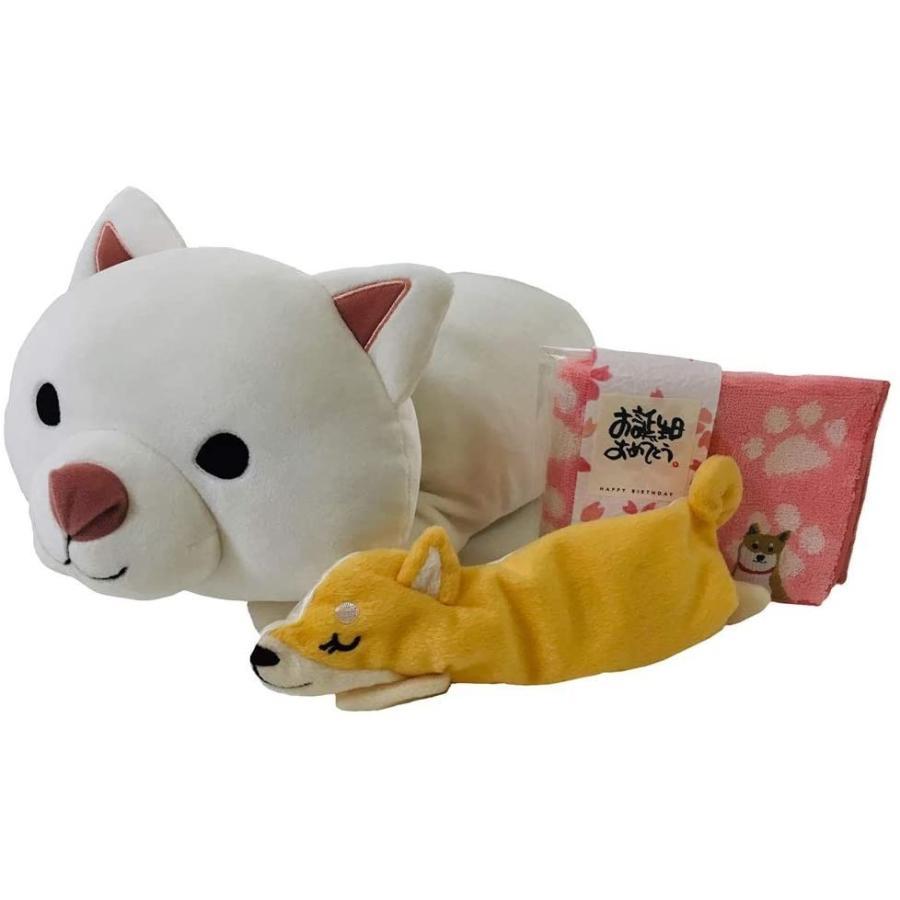柴犬の「しらいしさん」くつろぎ枕・アイピローとミニタオル(メッセージ付き)のセット|kimochidesu-net