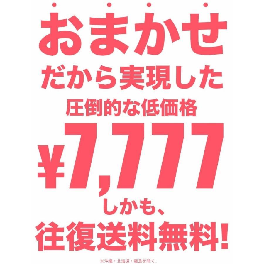 レンタル おまかせ 訪問着着物 安心保証付き 結婚式 七五三 入学式 卒業式 往復送料無料 色柄豊富|kimono-cafe|09