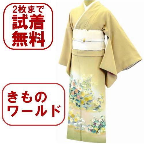 色留袖 レンタル 514番 20点フルセットレンタル 往復送料無料|kimono-world