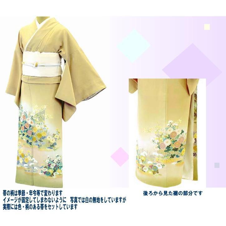 色留袖 レンタル 514番 20点フルセットレンタル 往復送料無料|kimono-world|02