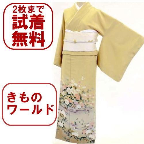 色留袖 レンタル 515番 20点フルセットレンタル 往復送料無料|kimono-world