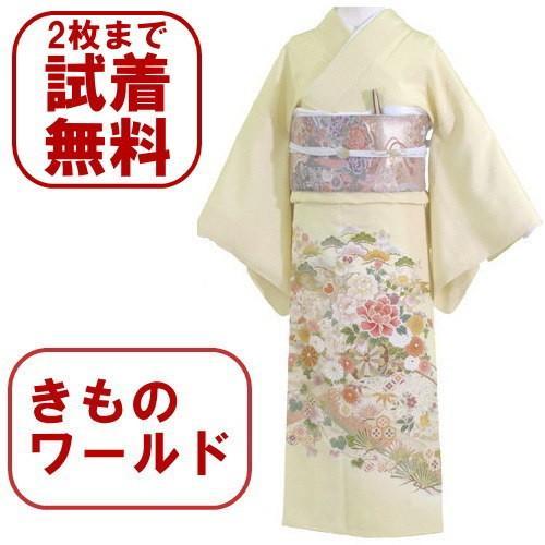 色留袖 レンタル 546番 20点フルセットレンタル 往復送料無料 kimono-world
