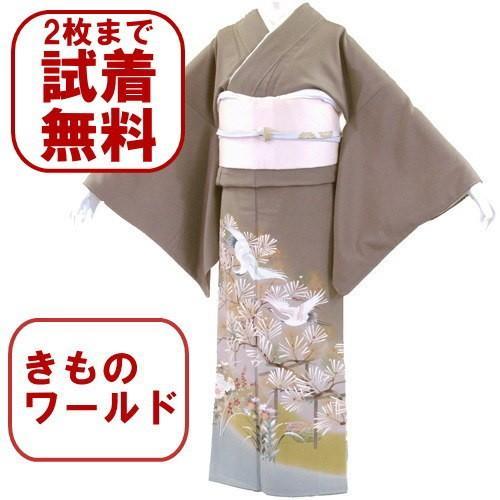 色留袖 レンタル 711番 20点フルセットレンタル 往復送料無料|kimono-world